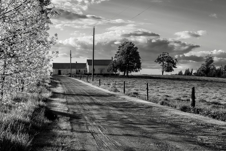 Farm, near Rice Lake