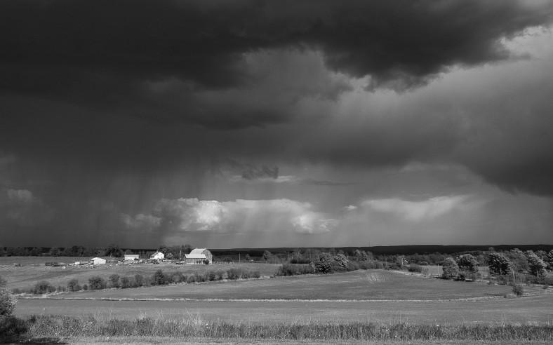 Rain, near Rice Lake