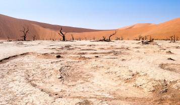 Dead Vlei, Namibia #1