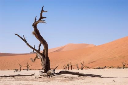 Dead Vlei, Namibia #2
