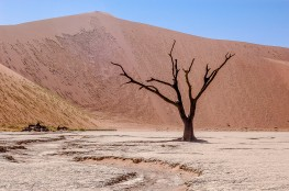 Dead Vlei, Namibia #4