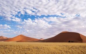 Landscape, Namibia #3