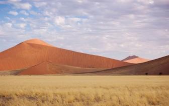 Landscape, Namibia #4