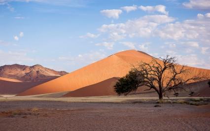 Landscape, Namibia #5