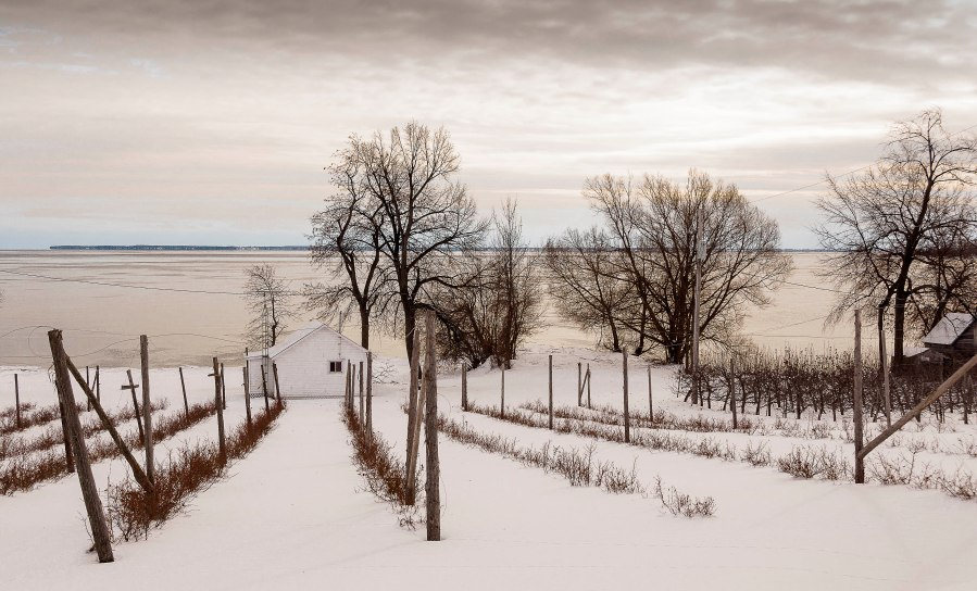 winter-prince-edward-county-1