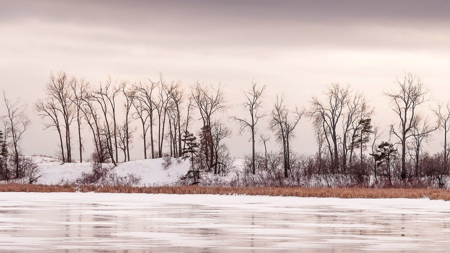 winter-prince-edward-county-2