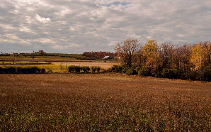 Fall, Bailieboro