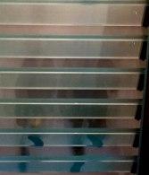glass-stairs-3-matte