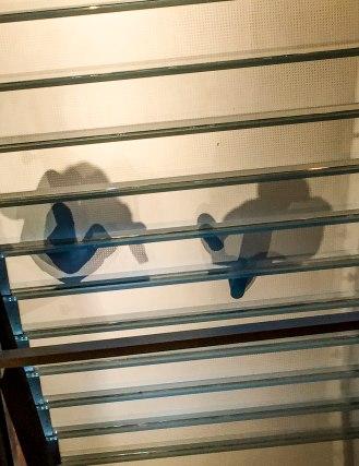 glass-stairs-5-matte