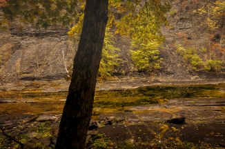 taughannock-state-park-4