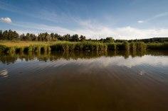 first-pond