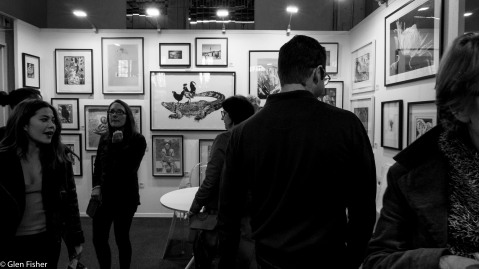 Gallery # 1