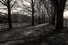 Abingdon Estate