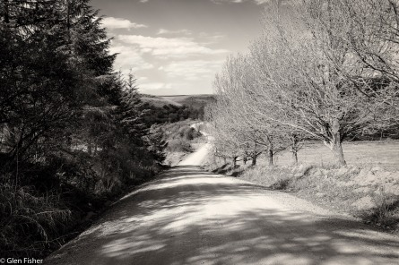 The road to Ardmore