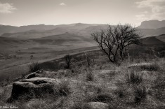 Viewpoint, Drakensberg