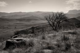 Viewpoint, Drakensberg