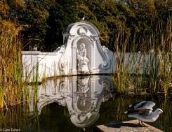 Cape Town Gardens