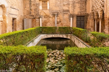 Water, Real Alcazar # 2