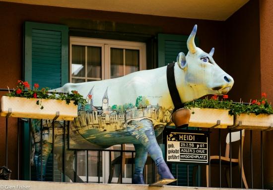 Photograph of Heidi the cow, in Zurich's Altstadt