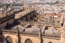 Cathedral, from La Giralda