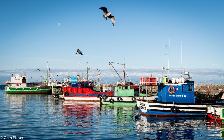 Kalk Bay FishingHarbour